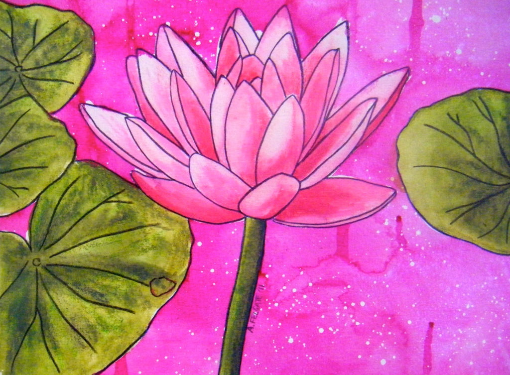 Pink Waterlily Watercolour pencil and ink on paper, 200mm x 300mm, AUD$200